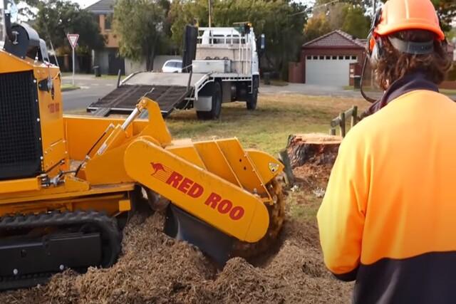 Pomona Tree Service stump removal
